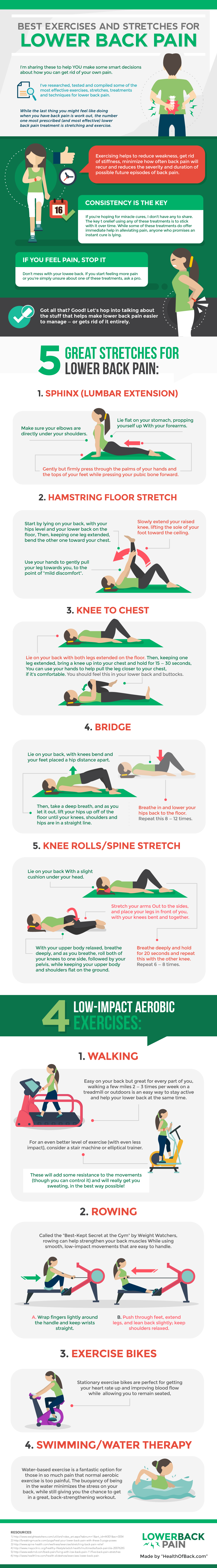 9 Best Exercises And Stretches For Lower Back Pain Hd